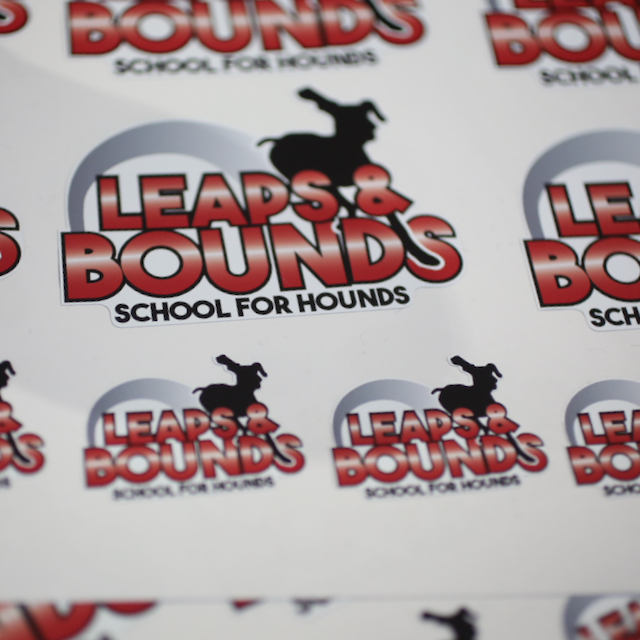 leaps-and-bounds-stickers